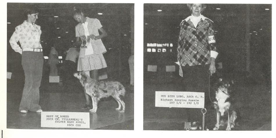 74 ASCA TX dogs Sorensen